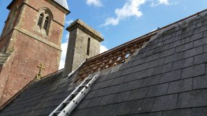 roofing work for bat surveying and mitigation